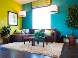 Покраска стен, дизайн фото