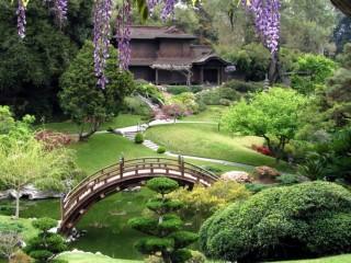 Ландшафтный дизайн сада в китайском стиле