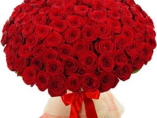 Почему стоит покупать розы онлайн?